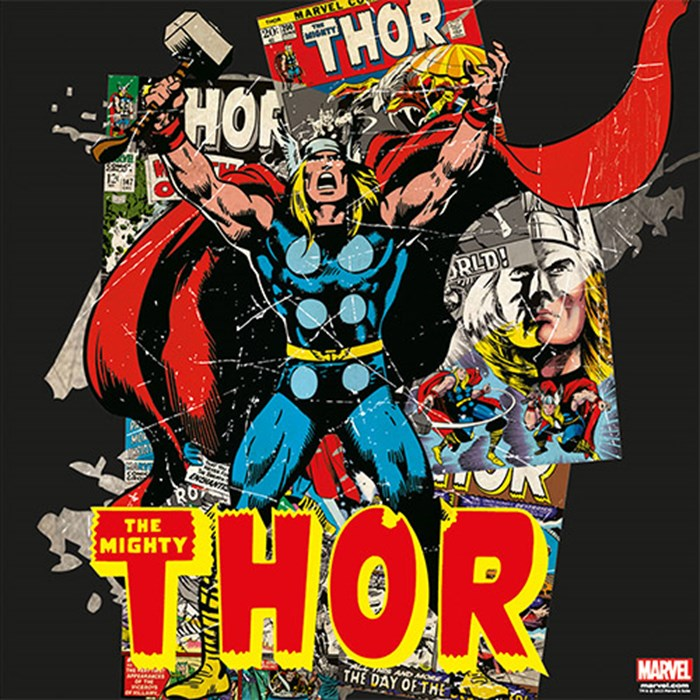 Avengers-Age-of-Ultron_Graham+Brown-Mighty-Thor-Canvas