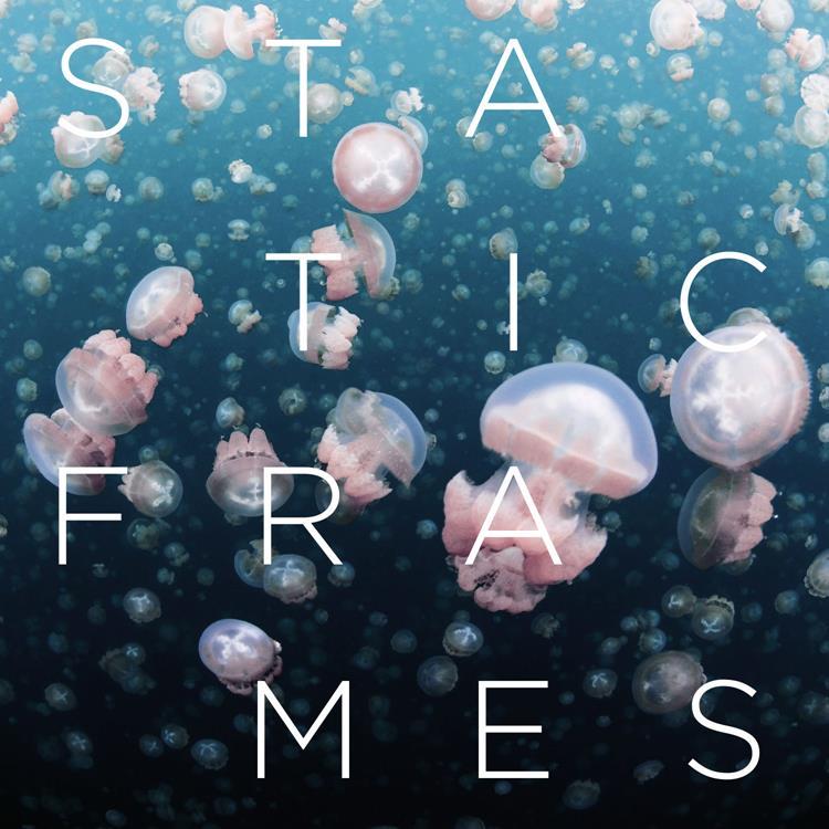 Static Frames 750