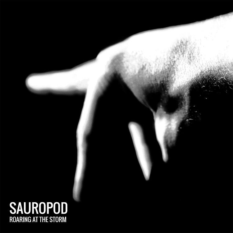 sauropod_roaringatthestorm_popmonitor_2016